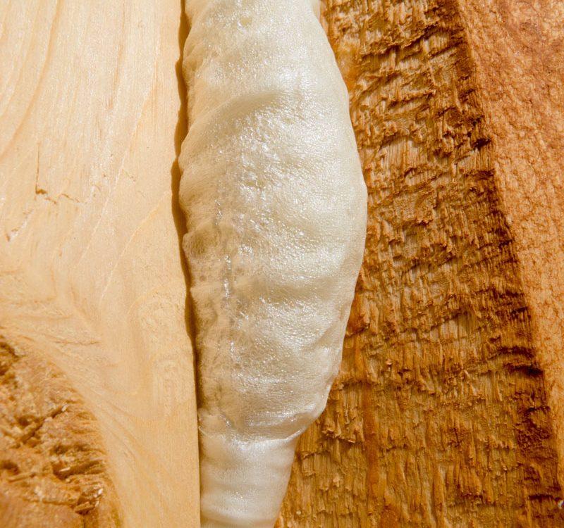 Ocieplanie pianką PUR drewna
